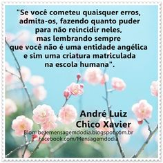 Chico Xavier - André Luiz