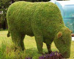 #The Greenery Animal