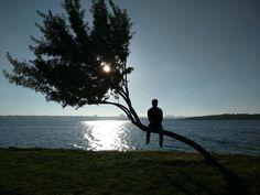 Personnes qui aiment être seules : Les gens confondent souvent être solitaire et la solitude. Mais il y a beaucoup de gens qui préfèrent passer du temps