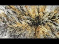 Between The Folds   Dir. Vanessa Gould