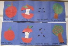 Apple Life Cycle craft... would change the order but I like the idea of a foldable