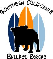 SoCal Bulldog Rescue they are an amazing group of people helping the Bullies