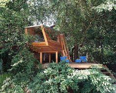 baumraum | buschhaus münchen
