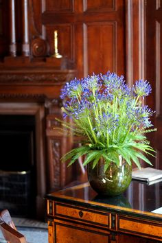 A vase arrangement of beautiful blue agapanthus with unbrella fern, we used moss to line the glass vase for a natural look. #reidsflorists