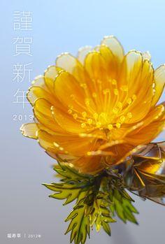 adonis hairpin made by Sakae あけましておめでとうございます! : 榮 - kanzashi sakae - 簪作家
