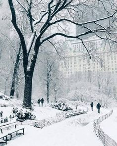 Central Park covered by snow & New York, United States. Photo by Tag someone you love & The post Central Park covered by snow New York, & appeared first on . Winter Szenen, Winter Magic, New York Winter, Winter In Nyc, New York Snow, Belle Photo Instagram, Disney Instagram, Instagram Travel, New York Weihnachten