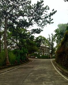 Everlasting flower wright park baguio city philippines gardens reposting gleharbatman try to visit old diplomat hotel baguio city for free old diplomat hotel tree home architecture building road outdoors solutioingenieria Image collections