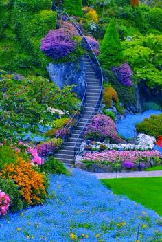 41 Butchart Gardens Victoria B. Butchart Gardens has 55 acres of carefully lan 41 Butchart Gardens Victoria B. Butchart Gardens has 55 acres of carefully lan 41 Butchart Gardens Victoria B. Butchart Gardens has 55 ac