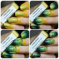 The process of creating a gradient with @color4nails Crystalline Nail Veil.  #color4nails #nails #nailru #nailrusecret #nailpolish #nailpolishaddict #nailswatch #instanails #naillaquer #nailstagram #manicure #nailgram #nails2inspire #notd #nailsoftheday #stamping #nailart #nailpromote #gradient #лакоманьяк #маникюр #градиент #лакдляногтей #стемпинг #ногти #фоторук #тегсообществанейлру