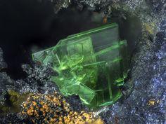 Zeunerite, Cu(UO2)2(AsO4)2•10-16(H2O), Clara Mine, Black Forest, Germany. Fov~1.6 mm. Photo etalon