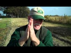 Growing Apples: How to Grow Apple Trees - YouTube