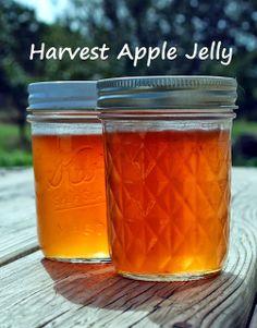 Harvest Apple Jelly Recipe on Oak Hill Homestead at http://www.oakhillhomestead.com/2013/10/harvest-apple-jelly.html