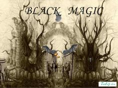 Black Magic Specialist can easily remove and also keep away negative energies from living being along with brings positive feelings in people life, which they actually want.