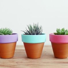 This is such a simple idea and yet creates a stunning effect. Just paint the top rim of a terracotta pot et voila!