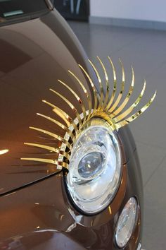 New Gold Chrome CarLashes