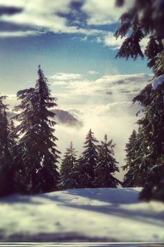 Above the clouds at Cypress Mountain