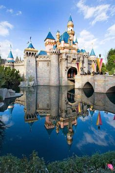 Sleeping Beauty's Castle - Paul Hiffmeyer/Disneyland Resort