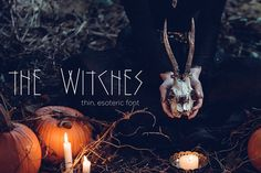The Witches font was lovingly created for all your esoteric or Halloween needs!  This font would be great for logos, event titles, social media posts, or even merchandise.  This font is only uppercase, but it will work with caps lock on or off. Numbers and basic punctuation are included.  Also included are .otf, ttf, and web safe fonts - which means you can use it anywhere, on any computer.