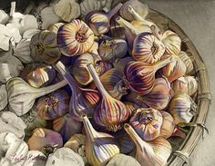 Leslie Redhead Fine Art: Purple Garlic