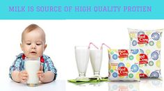 Milk is the source of high quality protien http://redcowdairy.in/