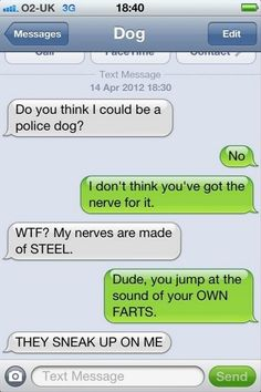 funny text messages Lol so Oliver. Funny Dog Texts, Funny Dogs, Funny Animals, Funniest Animals, Animal Funnies, Lol Text, Funny Text Conversations, Funny Text Messages, Thing 1