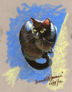 Daily Sketch: Mewsette in Sun by Bernadette E. Kazmarski