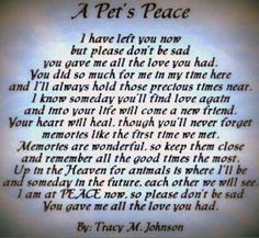 This makes me think of my beautiful Sandi. She was a gentle, sweet dog. Made me cry when I read this.