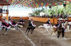 Logran escaramuzas chihuahuenses medalla de plata en la Olimpiada Nacional | La Opción de Chihuahua