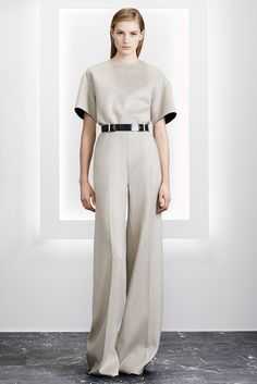 http://www.style.com/slideshows/fashion-shows/pre-fall-2015/jason-wu/collection/16