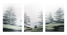 Nova Scotia Drive III by Patricia Morris hanging in Galerie Saint-Dizier in Old Montreal http://intranet.saintdizier.com/images/art/135_Patricia-Morris_Nova-Scotia-Drive-VIII-NS-_Triptych__3x40x60---low.jpg