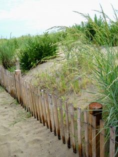 #Rehoboth Beach, Delaware     -   http://vacationtravelogue.com  Guaranteed Best price and availability  on Hotels
