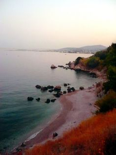 Mersinidi Beach in Chios island, Greece.  - Selected by www.oiamansion.com Chios Greece, Crete, Hotel Apartment, Apartments, Greece Islands, West Coast, Beaches, Countries, Landscapes
