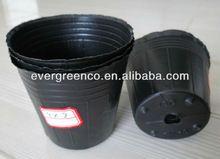 Vivero pot utilizado para la siembra de plástico