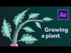Adobe After Effects Tutorials, After Effect Tutorial, Grow Together, Art Programs, Growing Plants, Motion Graphics, Filmmaking, Things That Bounce, Animation