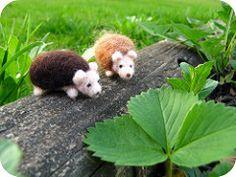 Felted hedgies in the garden (michelleness) Tags: brown cute green art animal felting craft hedgehog needlefelting fiber