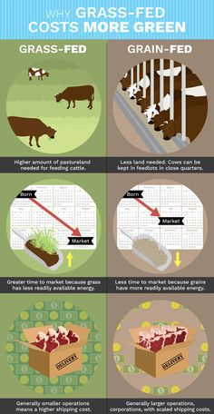 Your Ultimate Guide To Grass-Fed Beef  http://www.rodalesorganiclife.com/garden/your-ultimate-guide-to-grass-fed-beef