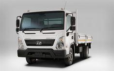 تحميل خلفيات هيونداي الأقوياء EX8, 4k, 2018 شاحنة, المركبات التجارية, نقل البضائع, الأقوياء EX8, هيونداي