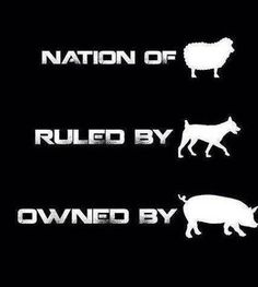 A Nation of Sheep, Ruled by Wolves, and Owned by Hogs. Pink Floyd Quotes, Pink Floyd Art, Beatles, Roger Waters, David Gilmour, Animes Wallpapers, Music Stuff, Rock Music, Rock N Roll