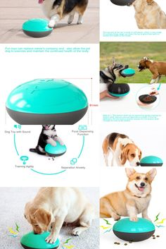 Replace your standard bowl with our slow feeder dog bowl to make mealtime fun! This combination of slow feeder and treat puzzle will help slow down your dog's eating pace while exercising your dog's mind. 🐶 Benefits: dog games for dog brain games. Interactive toys for dogs and puzzle for dogs. dog chew toys. These toys can relieve dogs' anxiety, kill boredom and prevent them from biting furniture, clothes or shoes. Dog Treat Toys, Dog Chew Toys, Brain Games For Dogs, Dog Games, Slow Feeder, Cat Feeder, Dog Puzzles, Puzzle Toys, Dog Feeding Bowls