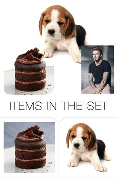 """How can you not?"" by christawallace ❤ liked on Polyvore featuring art"