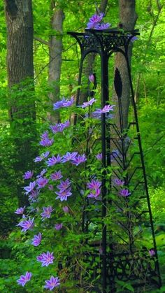 Love this tower with the clematis.