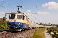 Swiss Railways, Electric Train, Trains, Harvest Season