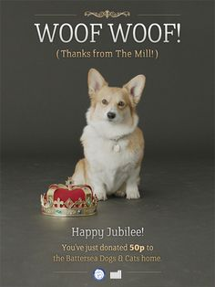 2 celebrate the Queen's Jubilee visual effects company The Mill have created Bill the interactive corgi. They've created a temporary home for Bill on a digital screen installed in their windows at 40-41 Great Marlborough Street, London (if you happen to be in the neighbourhood).