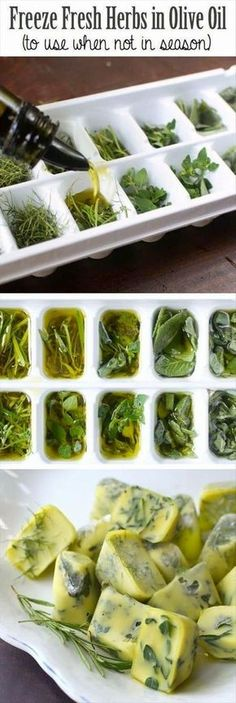 Freeze fresh herbs in olive oil. Great way to use up your herbs and minimise food waste. Freezing Fresh Herbs, Preserve Fresh Herbs, How To Freeze Herbs, Cooking With Fresh Herbs, Food Fresh, Cooking Tips, Cooking Recipes, Healthy Recipes, Vegetarian Recipes