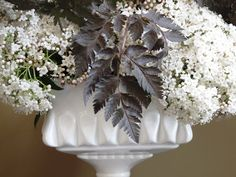 Chocolate-and-Vanilla, A graphic, fresh combination: dark-chocolate-colored Anthriscus sylvestris foliage with creamy white Viburnum tinus flowers. From Debra Prinzing's Slow Flowers book.