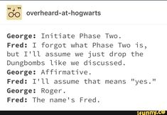 Harry Potter Comics, Harry Potter Puns, Harry Potter Feels, Harry Potter Marauders, Harry Potter Universal, Harry Potter World, Harry Potter Hogwarts, Weasley Twins, Harry Potter Pictures