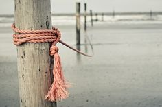 growing up on the water would have loved to have seen some of this thrown in - pinkrope