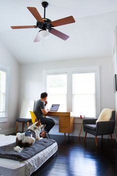 A minimalist inspired workspace with the bare necessities - desk, chairs, natural lighting, and of course, a dog.