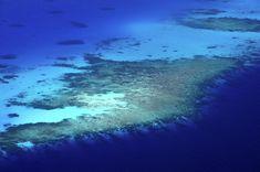 Aerial Journey Around Maldives Metal Print by Jenny Rainbow Aerial Photography, Fine Art Photography, Trending Art, Tropical Art, Dream Art, Asia Travel, Maldives, My Images, Fine Art America
