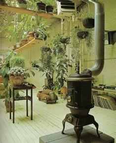 Google Image Result for http://www.blog.designsquish.com/images/uploads/indoor-garden-2_thumb.jpg